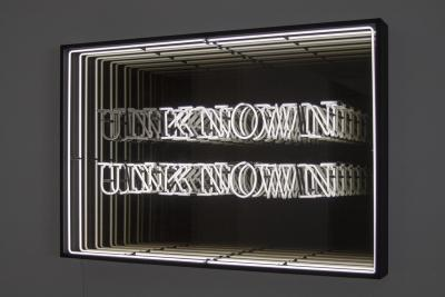 Known Unknown (infinity)